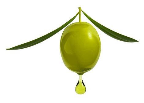 Olive-Reinos-de-Taifas